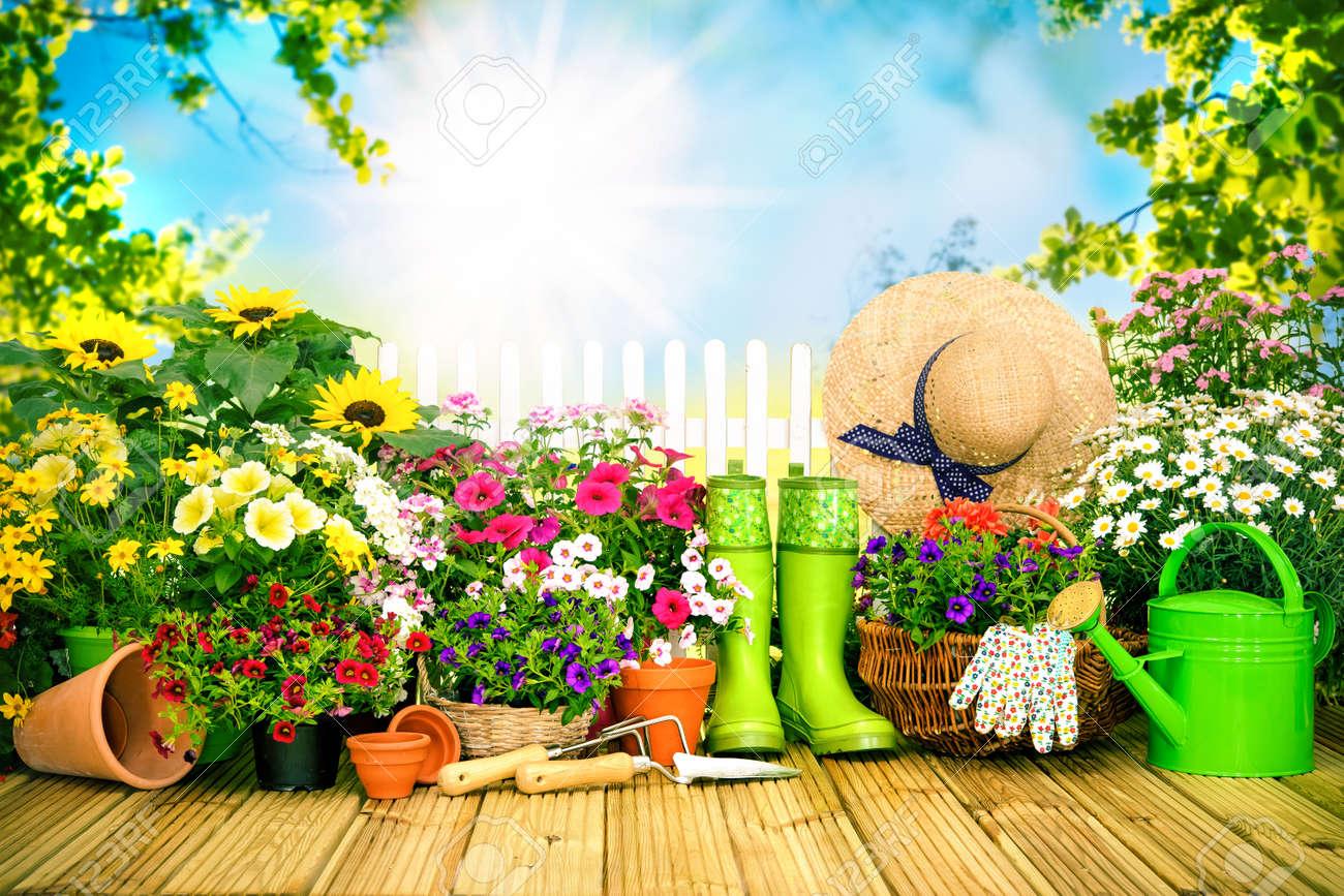Herramientas De Jardinería Y Flores En La Terraza En El Jardín
