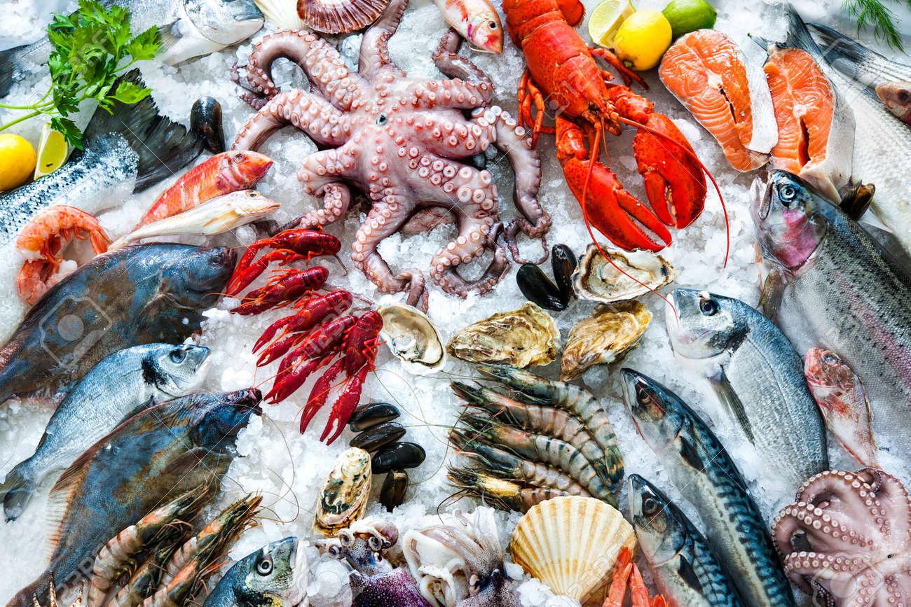 Fresh Fish Stock Photos. Royalty Free Fresh Fish Images