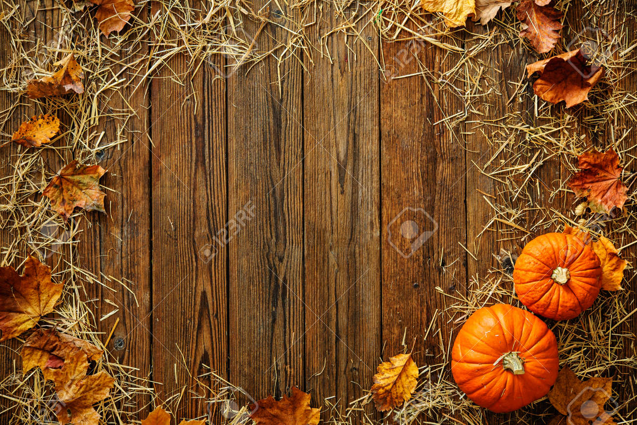 Harvest Or Thanksgiving Background With Gourds And Straw On A Rustic Wooden Table Stock Photo
