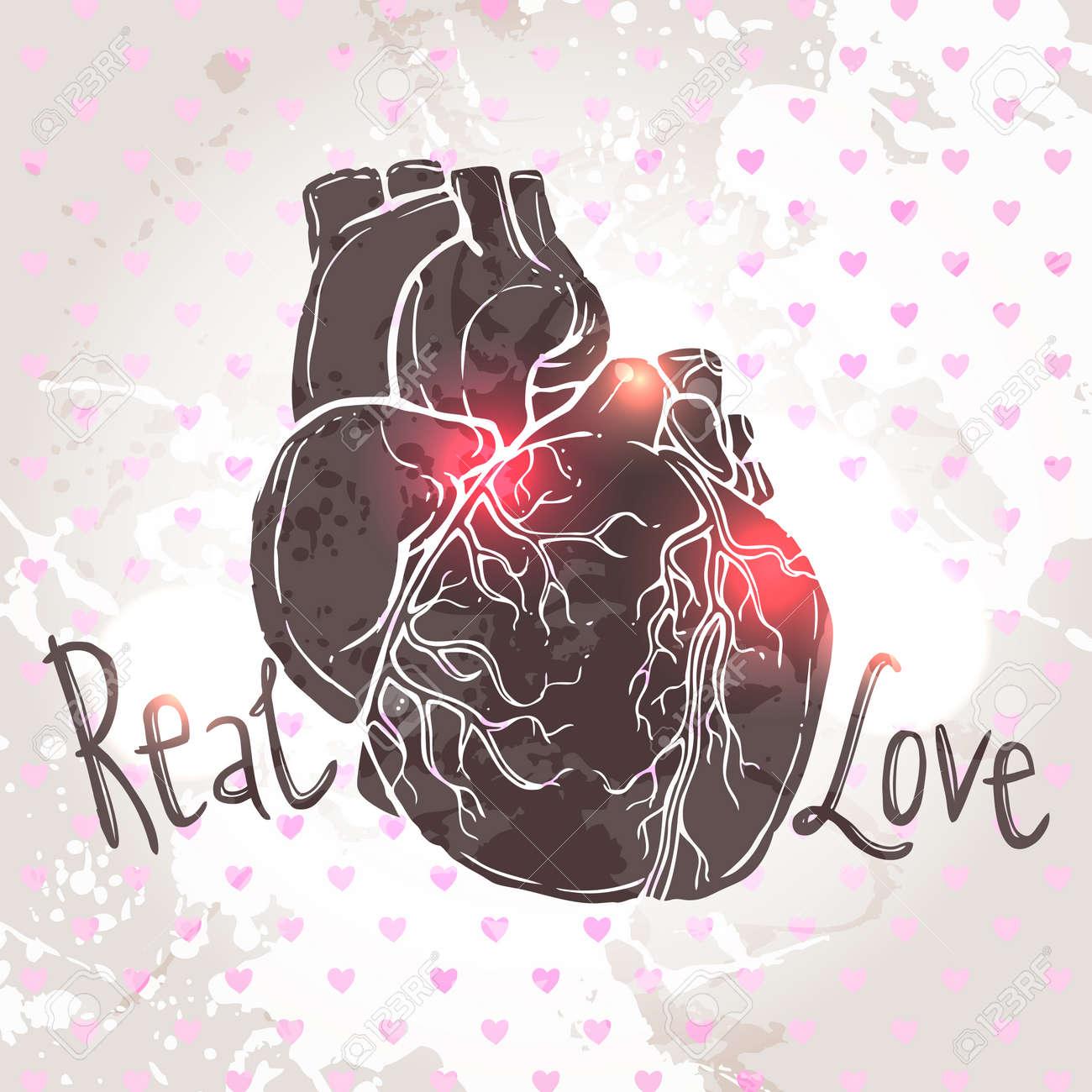 Tarjeta Para El Día De San Valentín Con Dibujo Del Corazón Anatómico ...