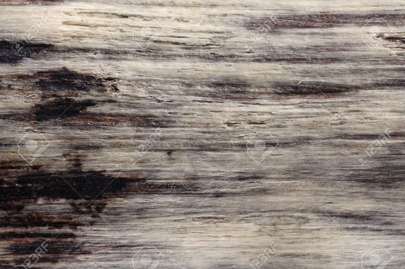 Driftwood Texture Background Stock Photo Picture And Royalty Free Image Image 47030867