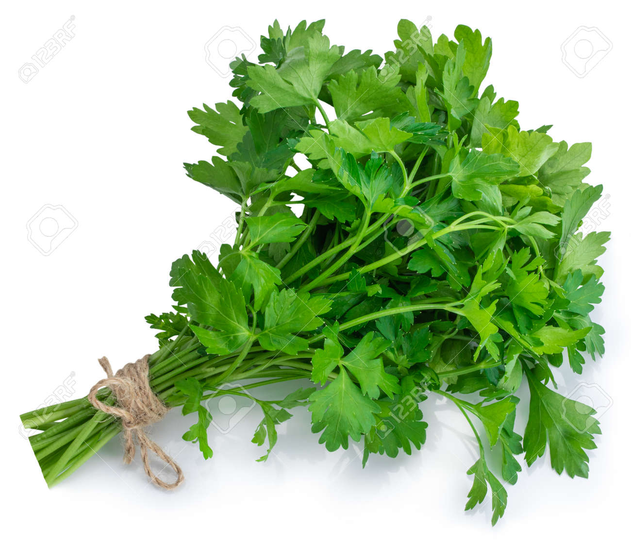 bunch fresh parsley isolated on white background. - 138394291