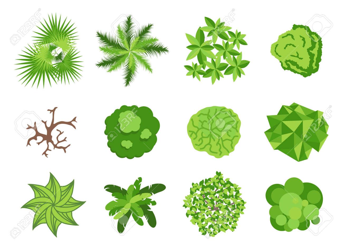 foto de archivo paisajismo elementos de diseo de jardines plantas rboles de jardinera iconos del vector aislados