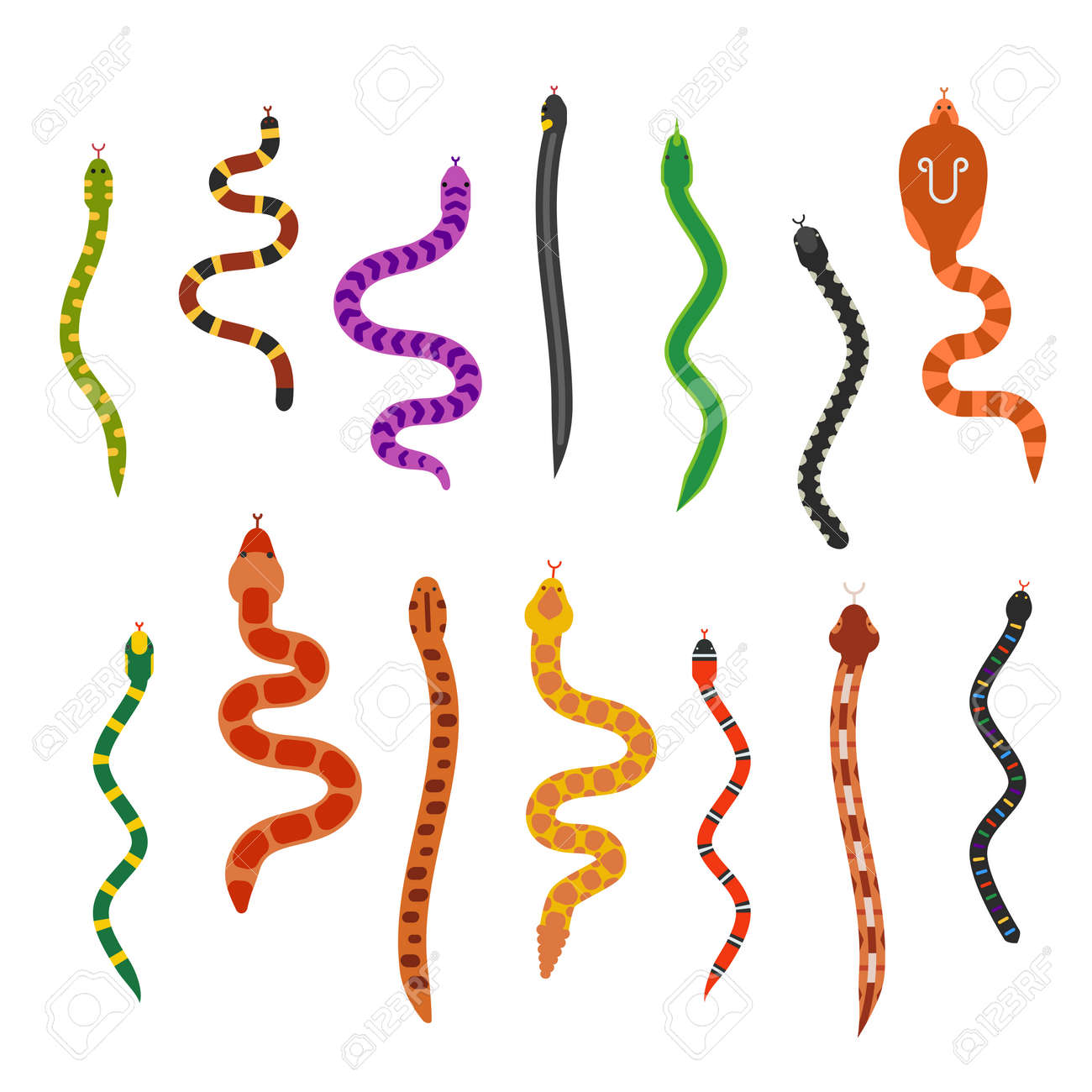 Vector flat snakes collection isolted on shite background. Vector snakes flat style. Different snakes skin texture - 51825347
