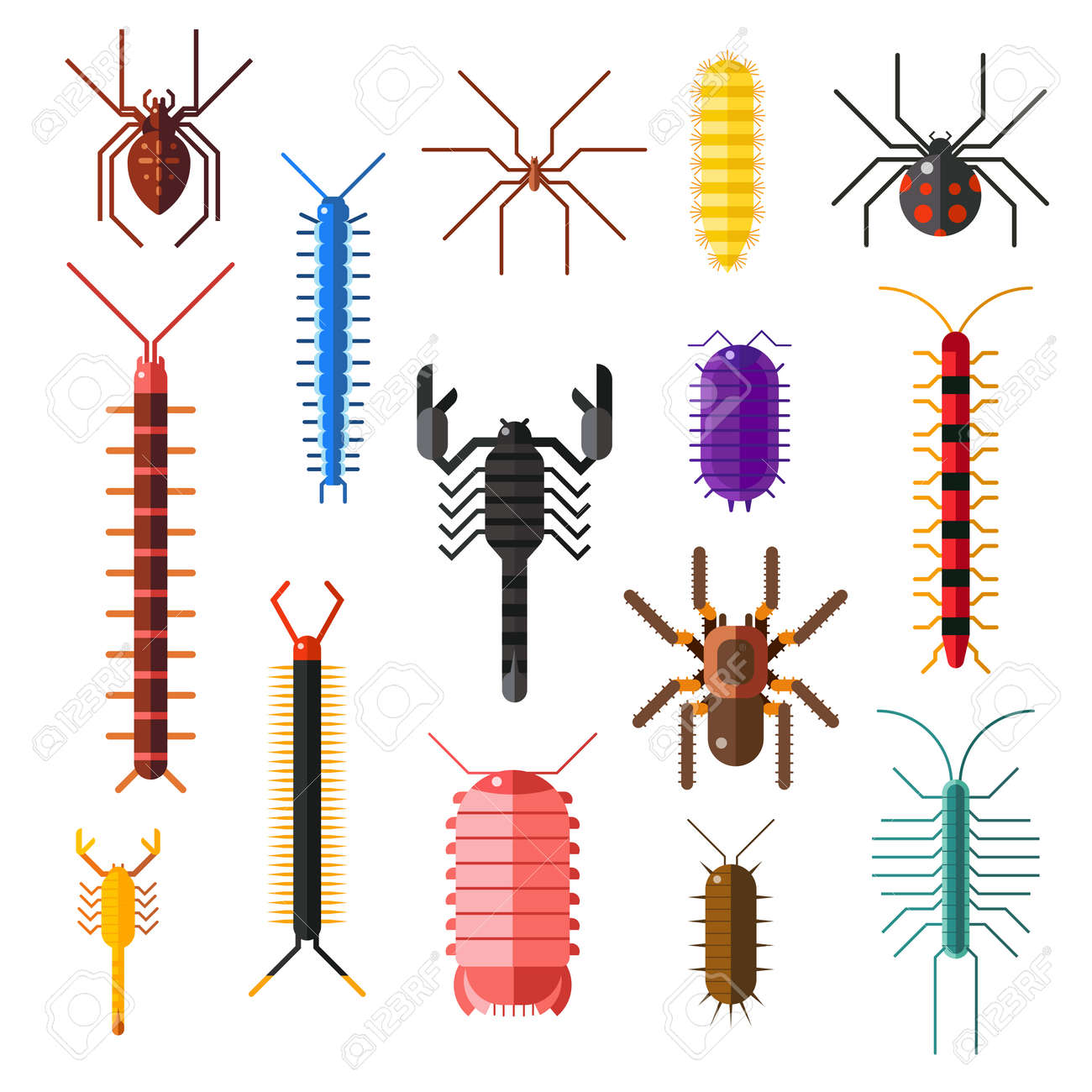 Spiders and scorpions dangerous insects animals vector cartoon