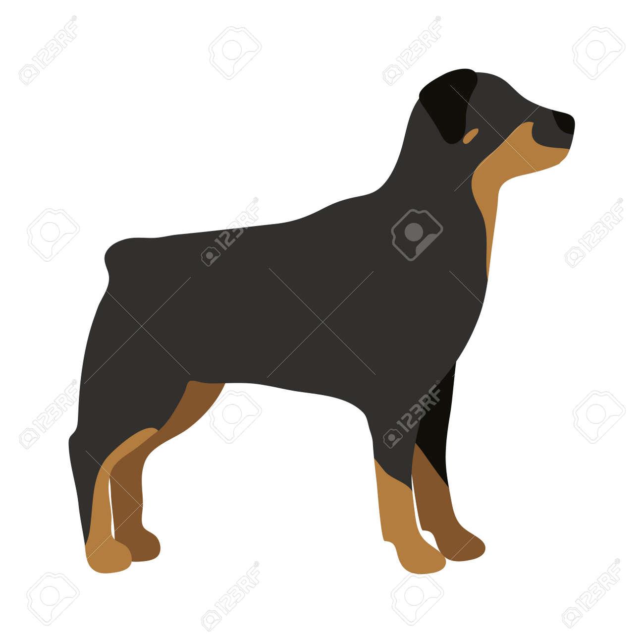 Wütend Flach Hund Haustier Und Hund Vektor Wohnung Retriever Hund