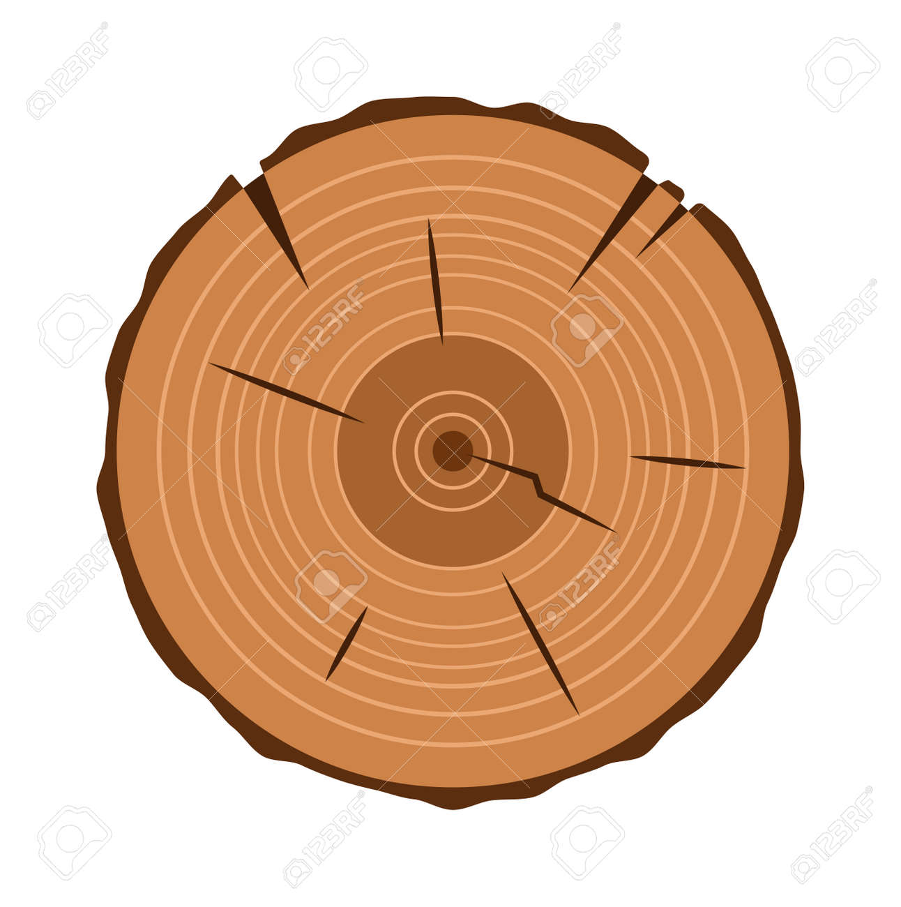 Tree Trunk Cross Section Natural Cut Wood Slice Circle Timber Ring Flat  Vector. Wood Slice
