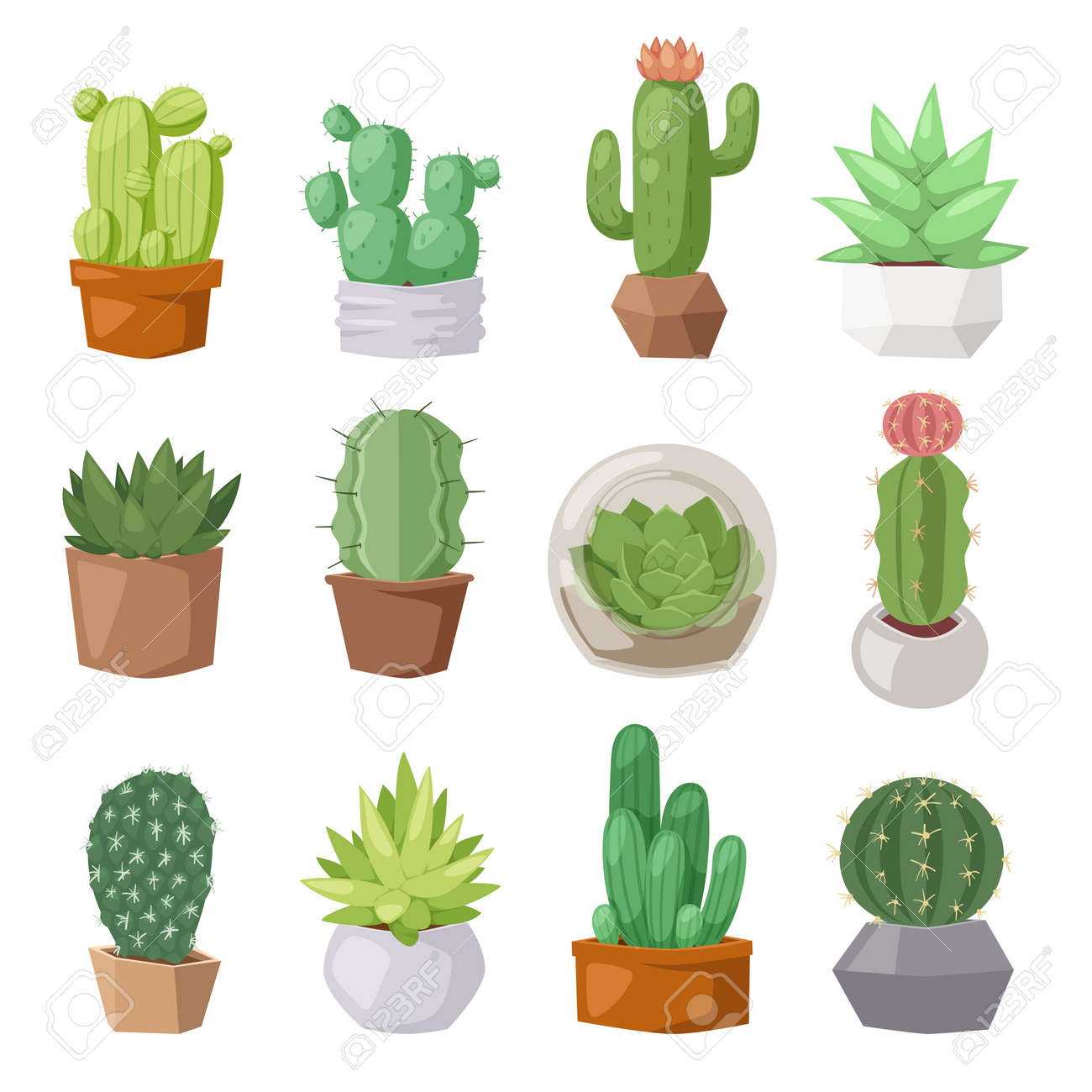Green desert plant nature cartoon cactus and mexican summer cute