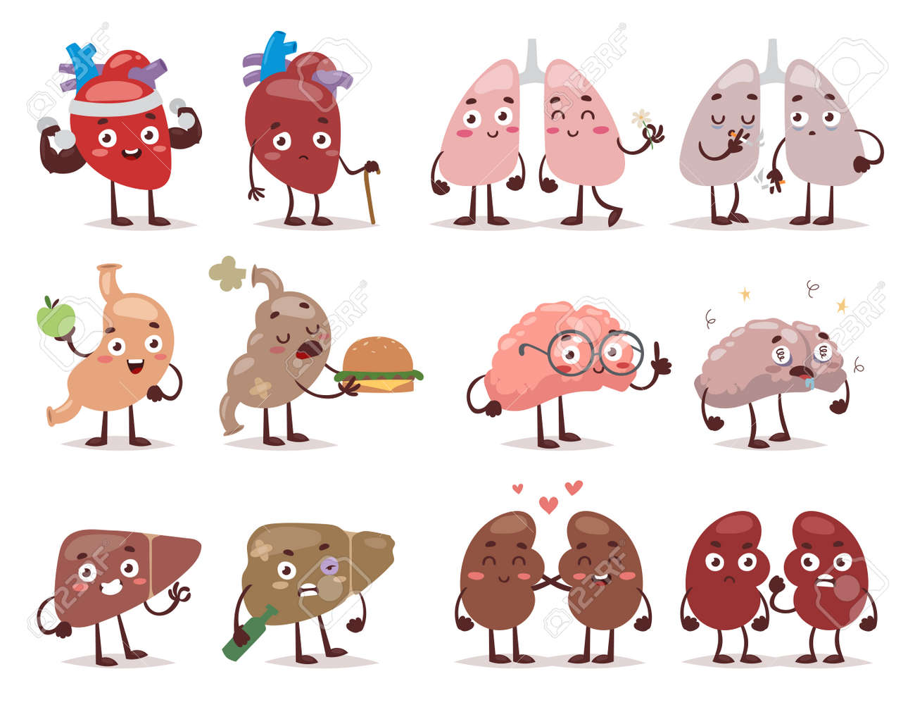 set cartoon internal human organs with cute faces vector