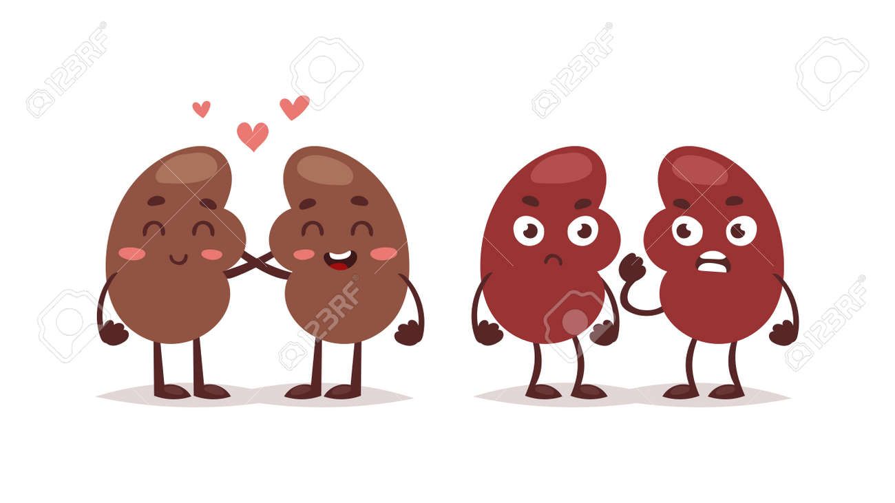 Estilo Lindo Sana Carácter Hígado Icono De Dibujos Animados. De ...