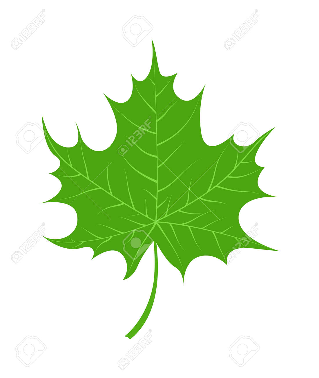 vector tropical leaves green tree leave natural green leaf isolated