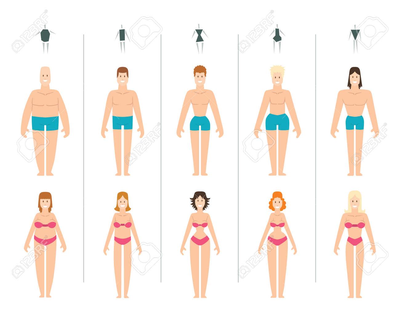 女性の体の種類はベクトル イラストです。体タイプ スリム解剖学憲法砂時計女性プロポーション セット。スタイルの四角形腰体型シェイプ  シルエットが女性の図します。ファッションの女の子の美体。