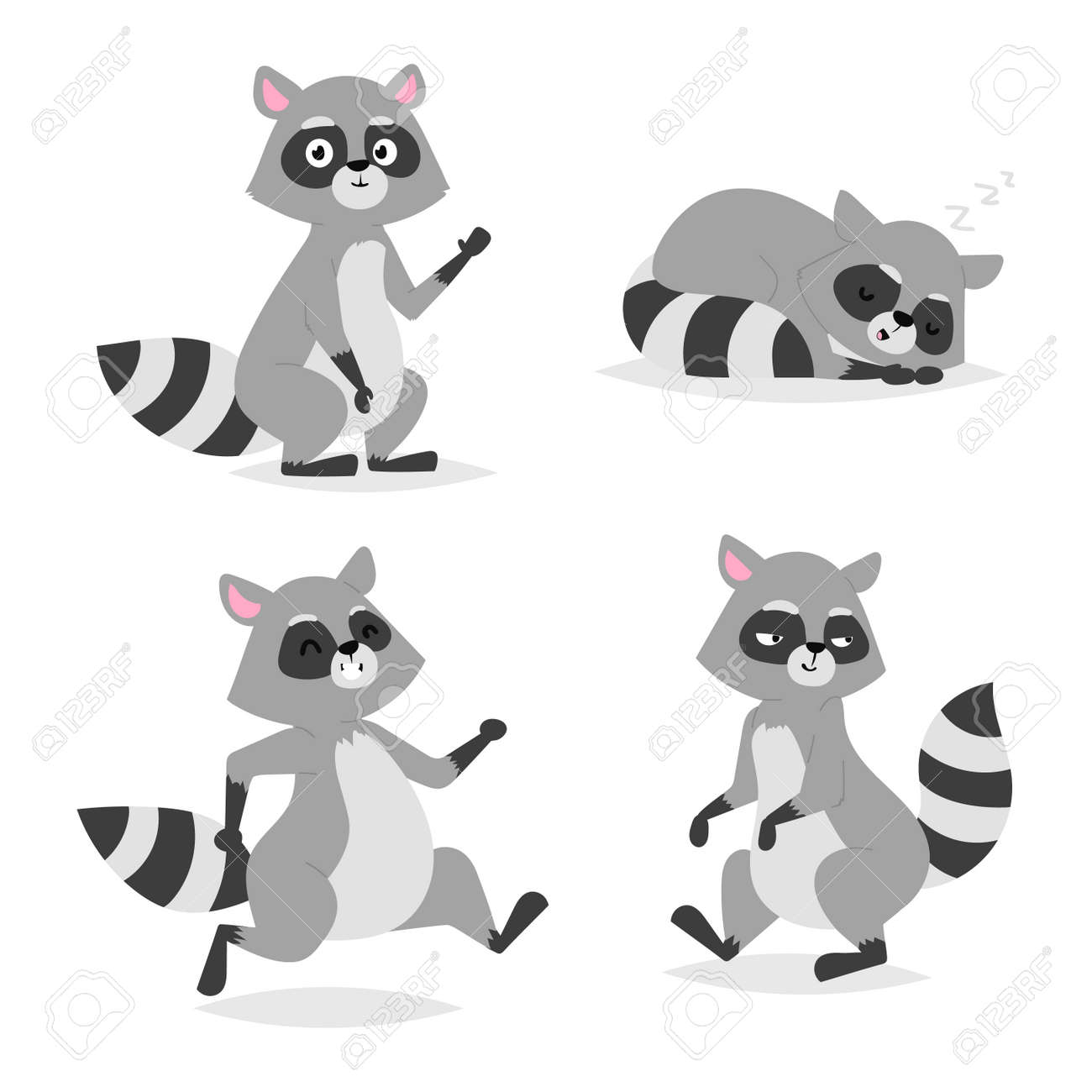 standing raccoon vector illustration cartoon set fun smile drawing