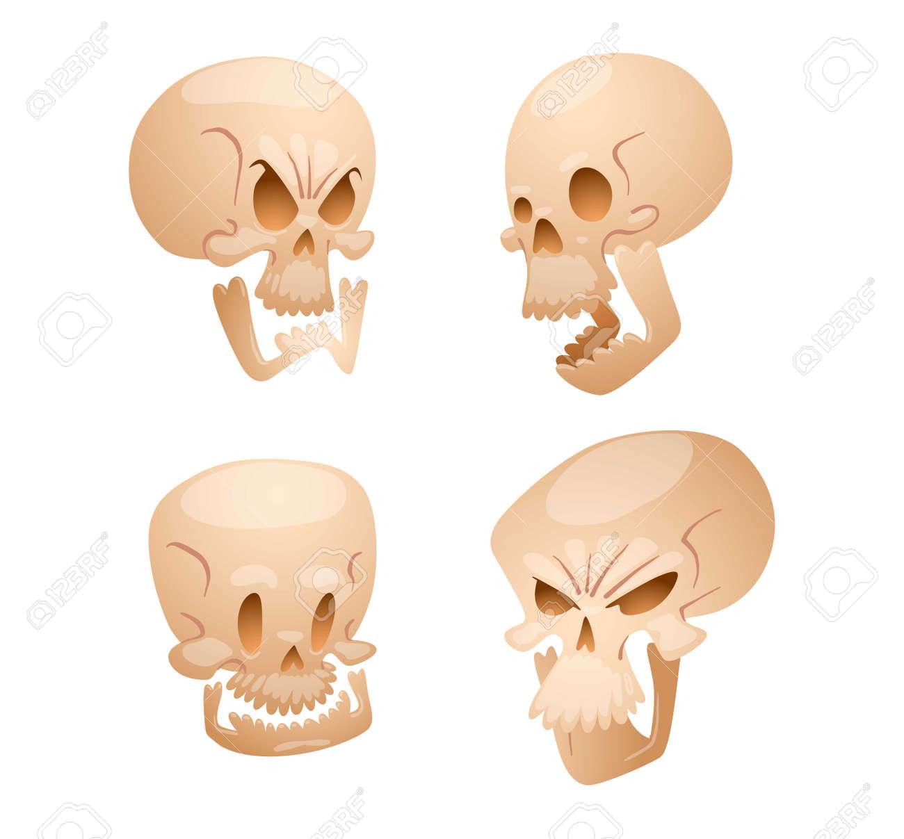 Hermosa Dibujo De La Anatomía Del Cráneo Embellecimiento - Imágenes ...