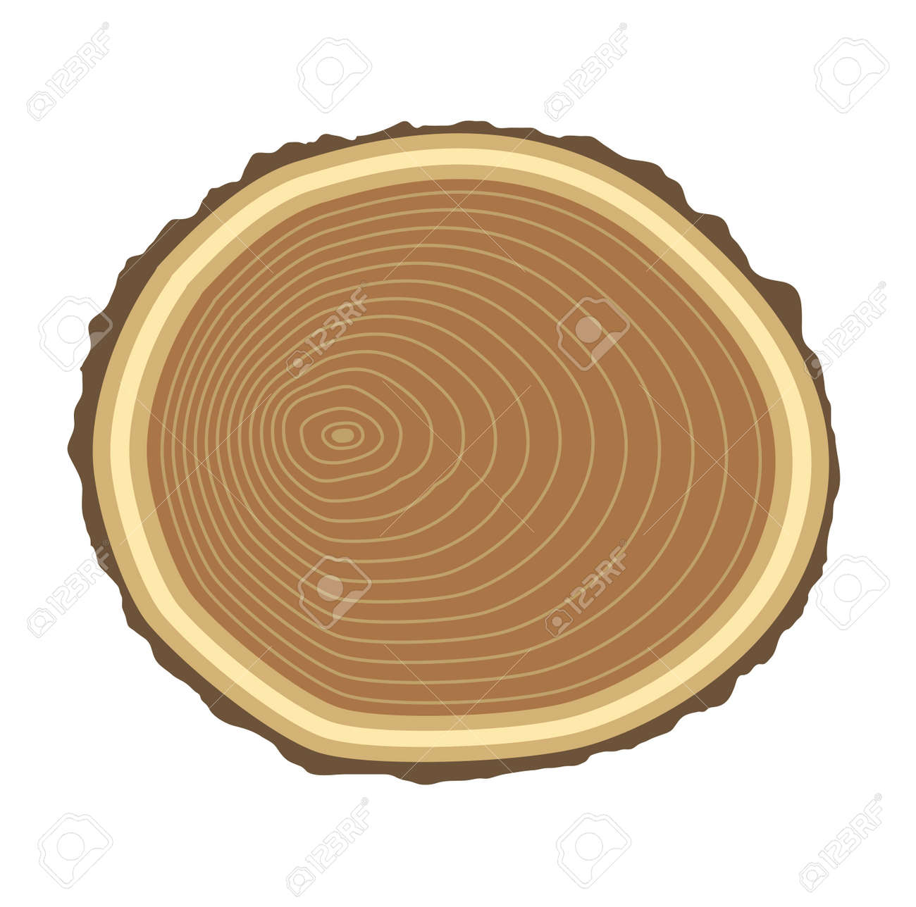 Vector   Wood Slice Texture Wooden Circle Cut Tree Material. Tree Slices  Wood Trunk Section Natural Timber. Slice Of Tree Trunk.