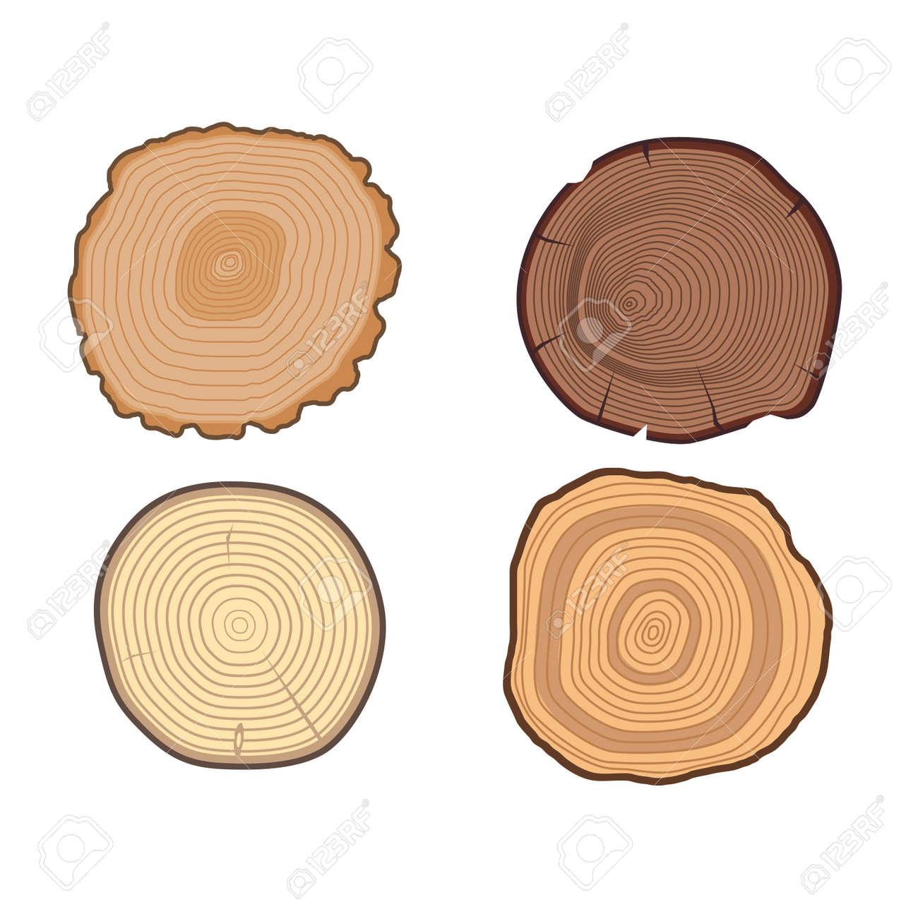 wood slice texture wooden circle cut tree material set of tree rh 123rf com wood texture vector free download wood texture vector free download ai