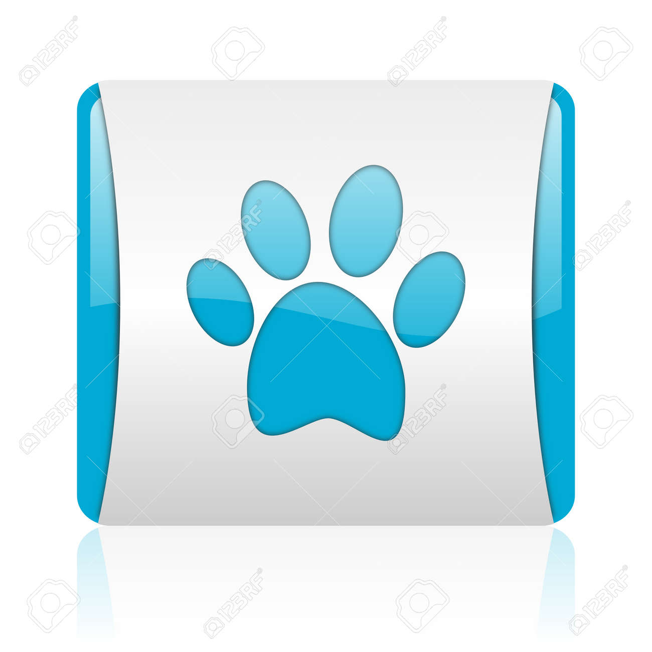 animal footprint blue and white square web glossy icon Stock Photo - 18444669