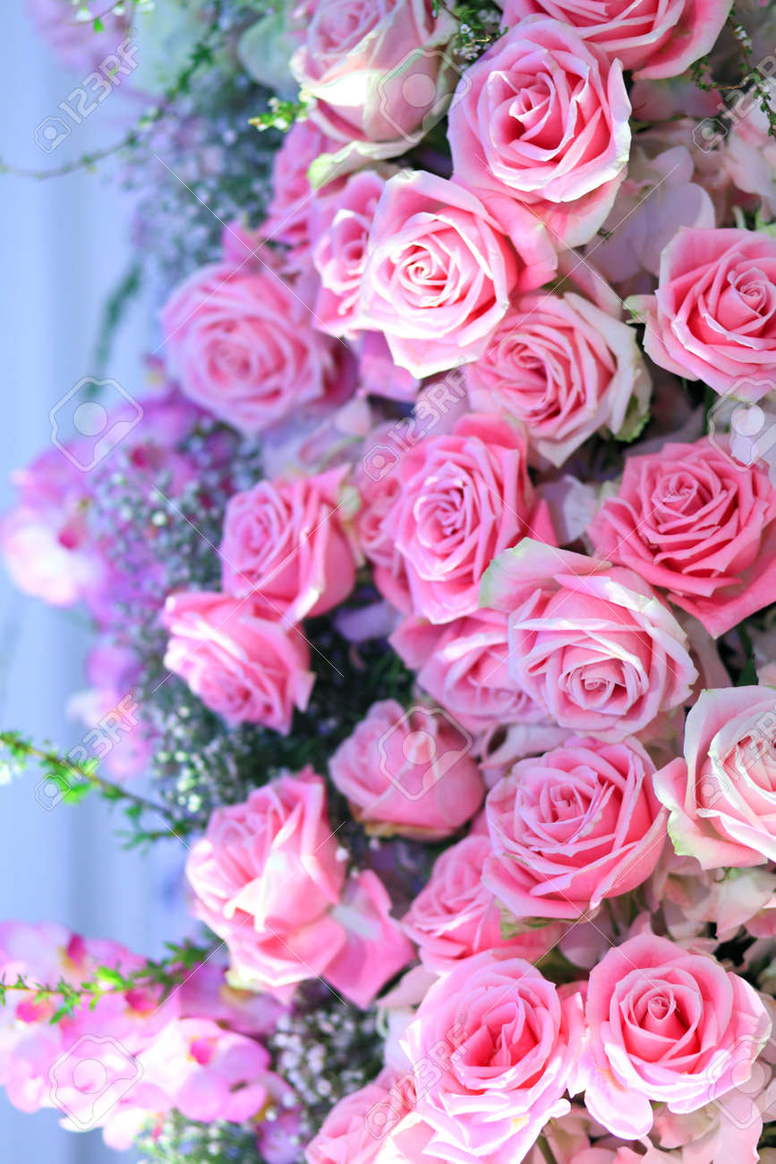 Grouping Of Pink Bridal Bouquets Pink Roses And Baby S Breath Pink Stock Photo Picture And Royalty Free Image Image 107689106