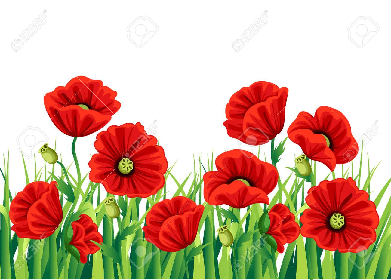 Red poppy flower isolated on white background vector red romantic red poppy flower isolated on white background vector red romantic poppy flowers and grass mightylinksfo
