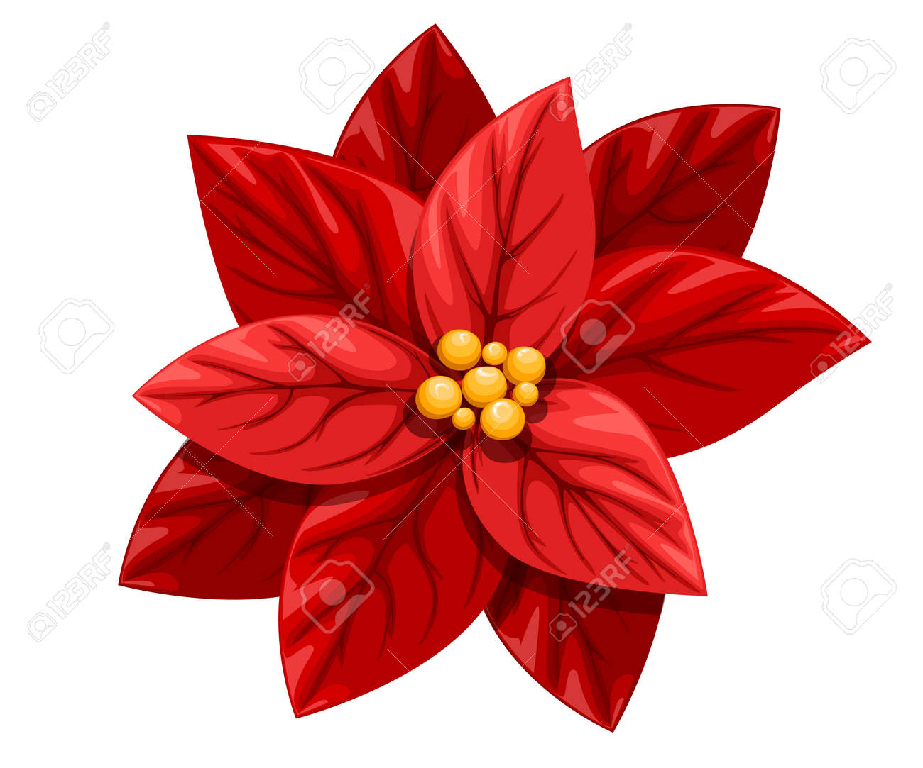 Beautiful Red Poinsettia Flower Christmas Decoration Christmas Royalty Free Cliparts Vectors And Stock Illustration Image 91002583