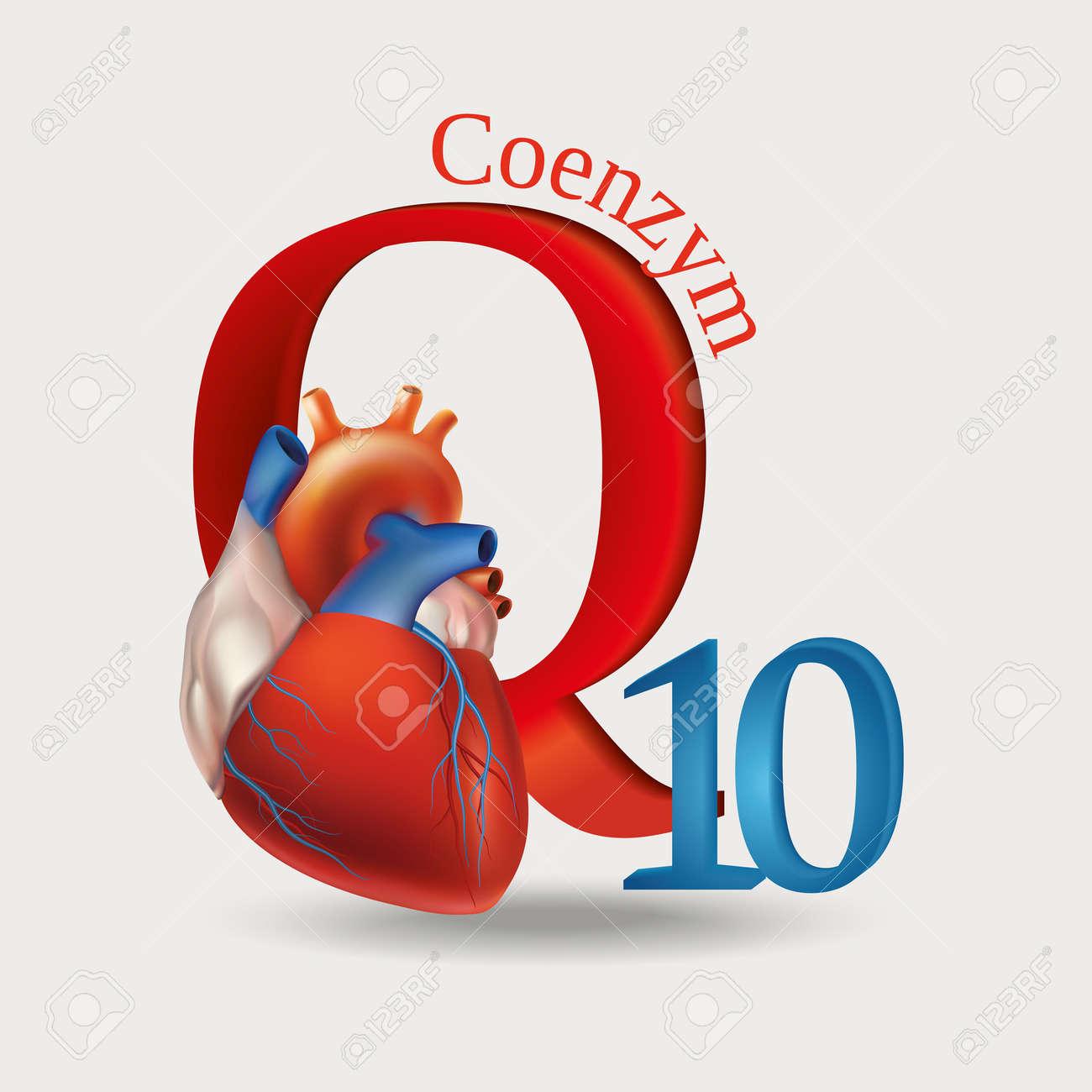 Schematische Darstellung Des Coenzym Q10 - Antioxidative Substanzen ...