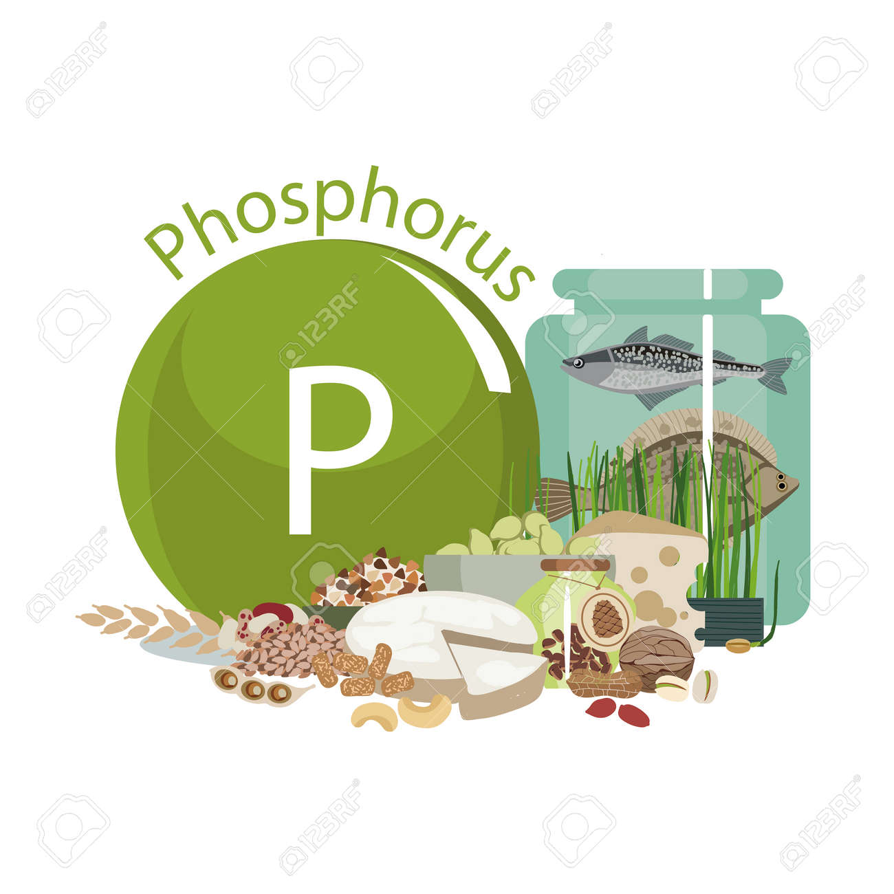 Phosphorus Food Sources Food Products With The Maximum Phosphorus