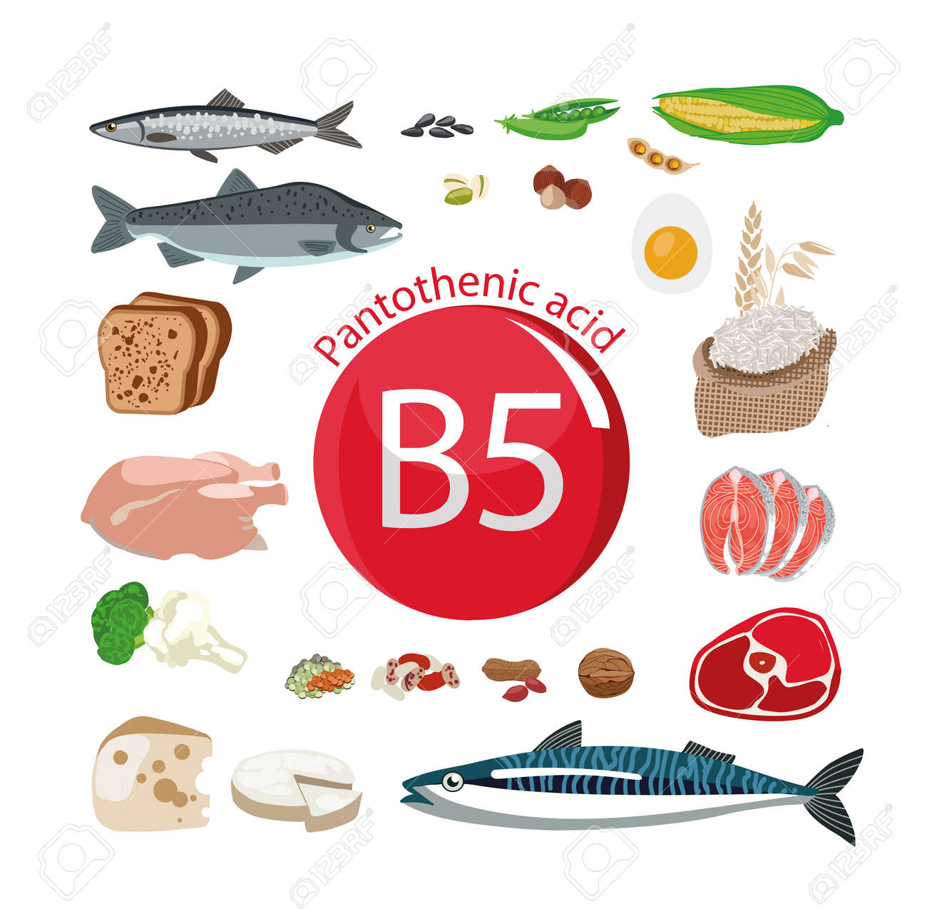 Vitamin B5 (pantothenic acid) 59