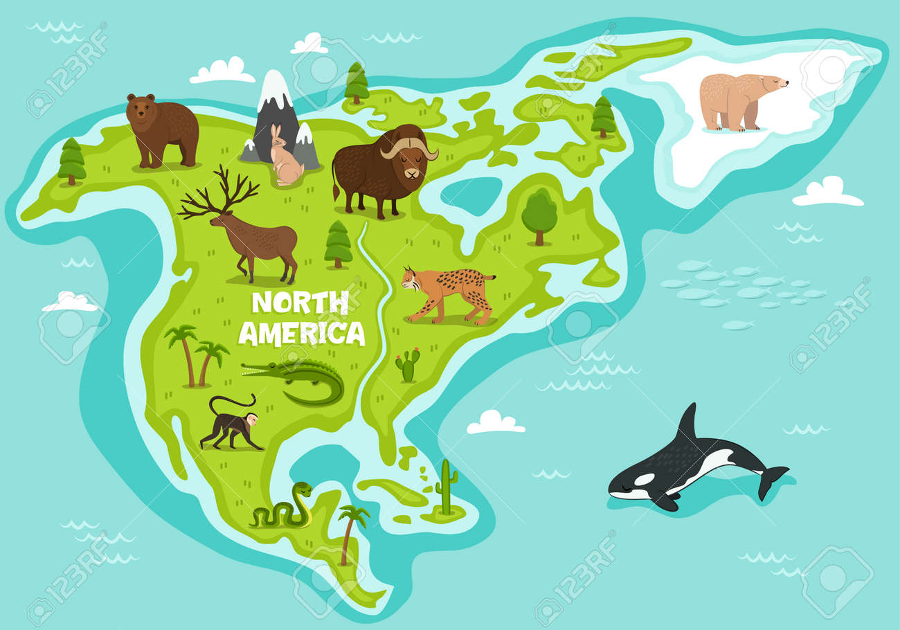 North American Map With Wildlife Animals Vector Illustration ...