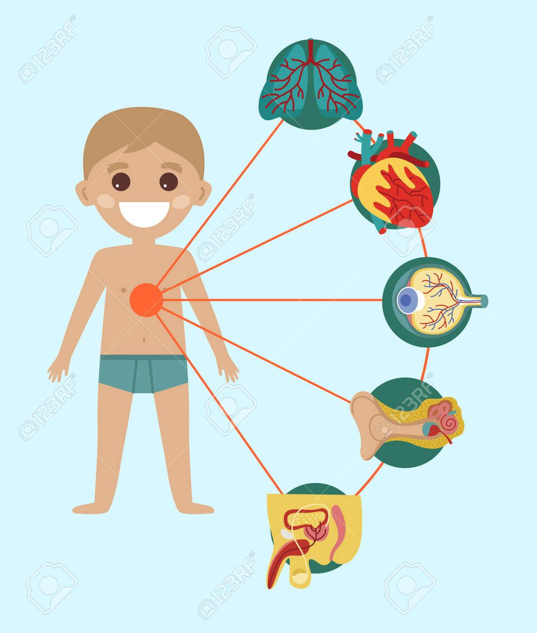 Embrome El Cartel Médico De La Salud Con La Anatomía Del Cuerpo ...