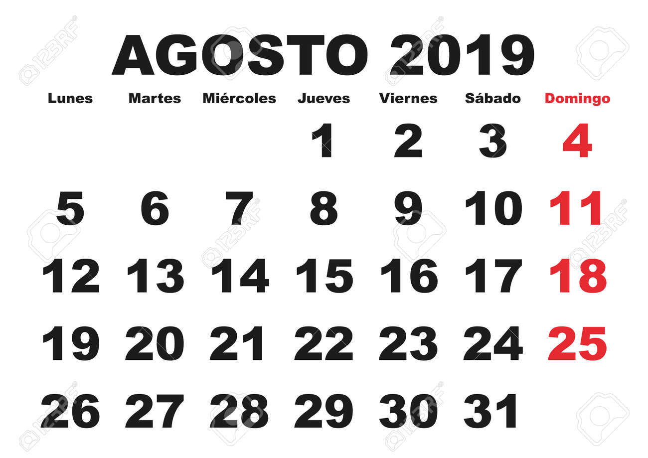 Calendario Vector 2019.August Month In A Year 2019 Wall Calendar In Spanish Agosto