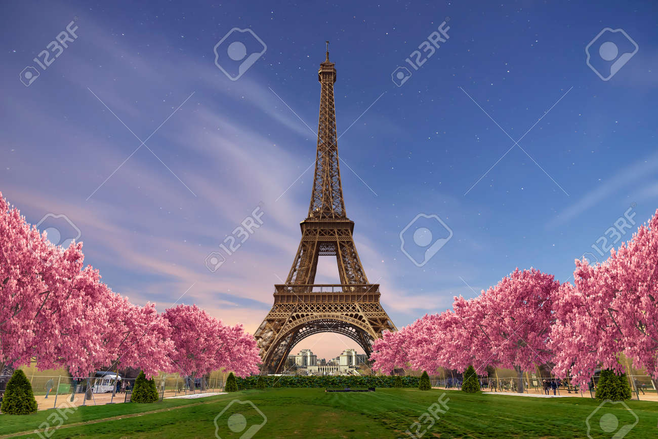 Eiffel tower from Camps of Mars at sunset - 143769628