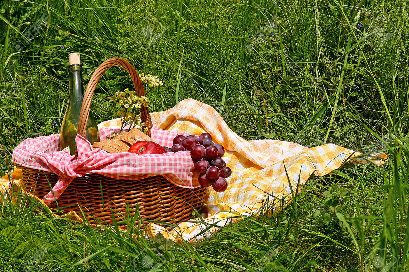 picnic on the grass Stock Photo - 13385046
