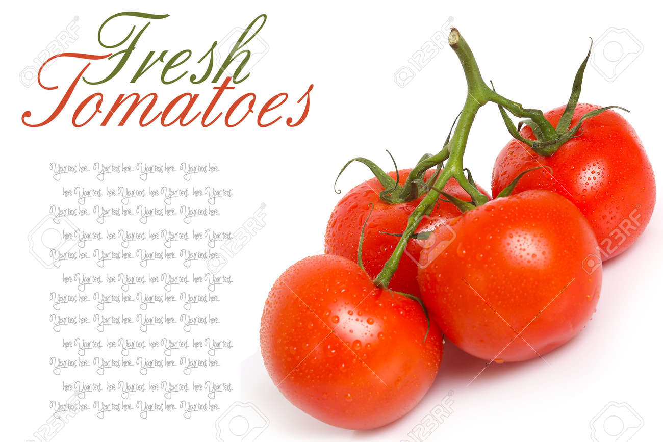 Close-up photo of tomatoes with water drops Stock Photo - 20283288