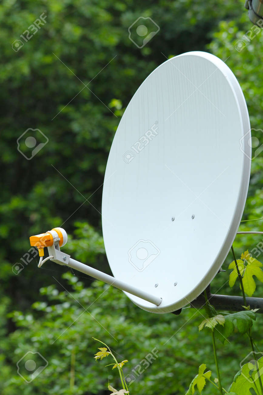 parabolic antenna on a background of forest Stock Photo - 20700044
