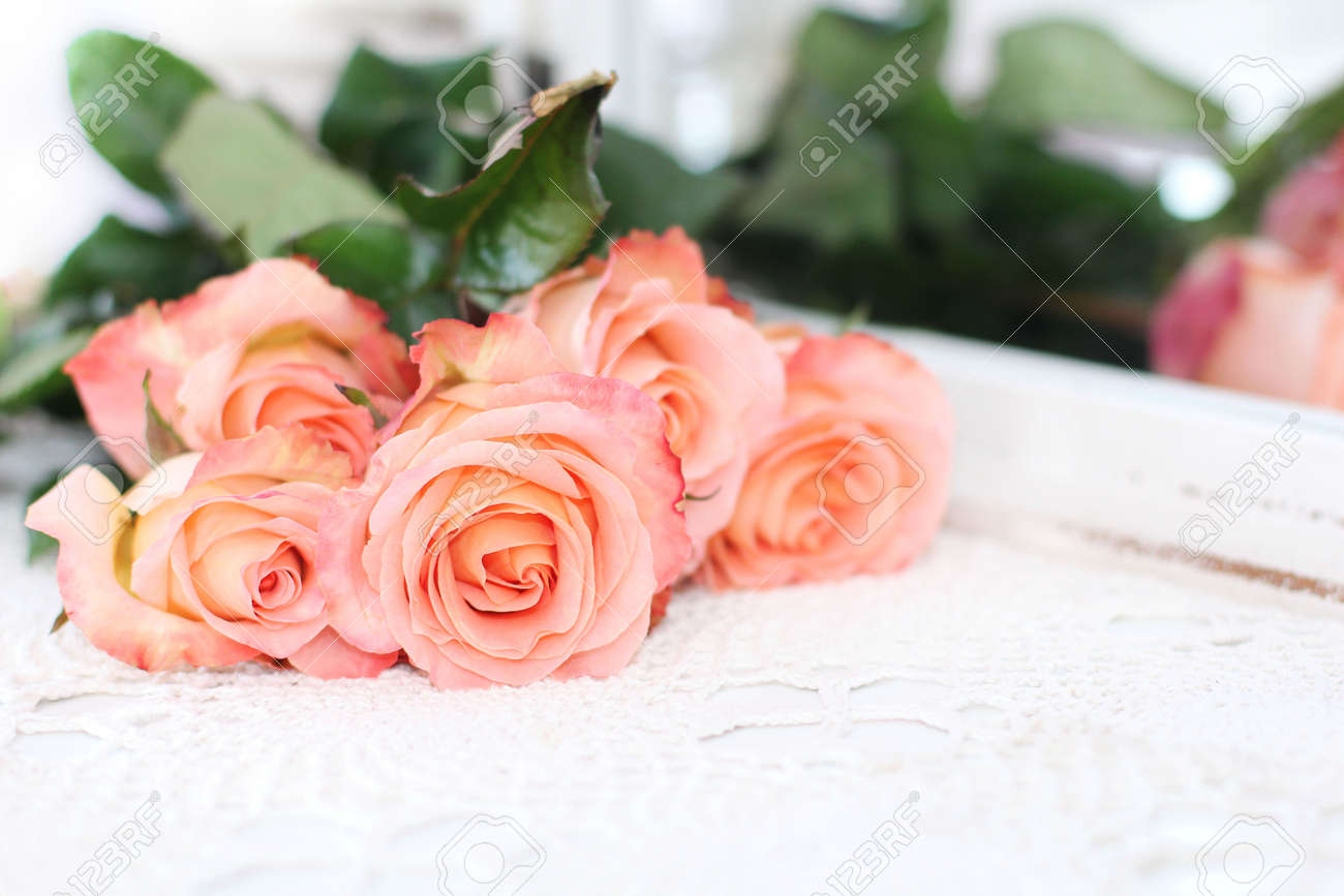 26+ Background Peach Roses