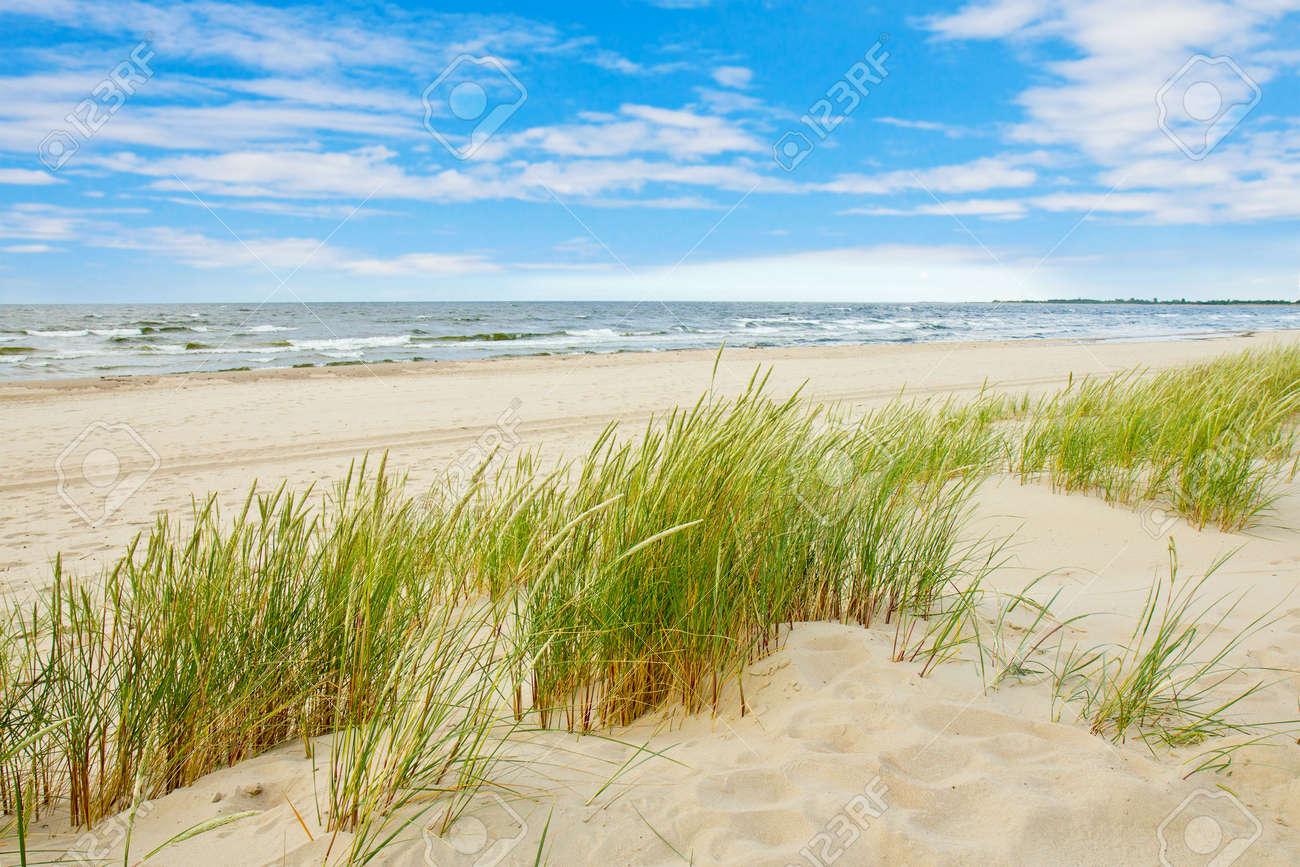 Grass sand dune beach sea view, Sobieszewo Baltic Sea, Poland - 57209500