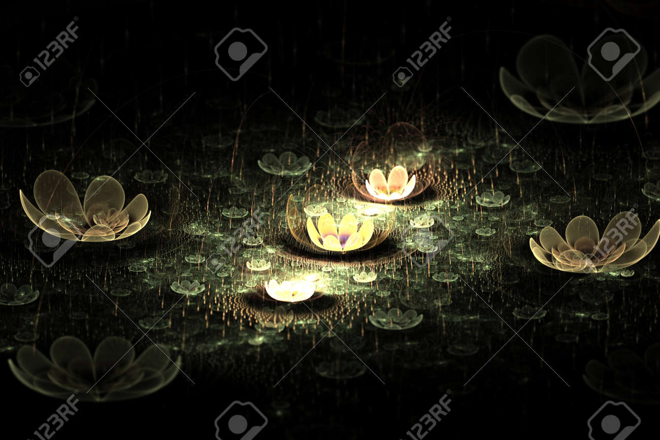 Waterlily or lotus flowers on a pond at night abstract fractal design for backgrounds and wallpapers Stock Photo - 14589667