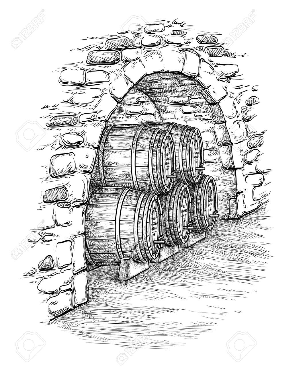 Ancient cellar with wine wooden barrels. Isolated on white background. Hand drawn vector illustration. - 64259473
