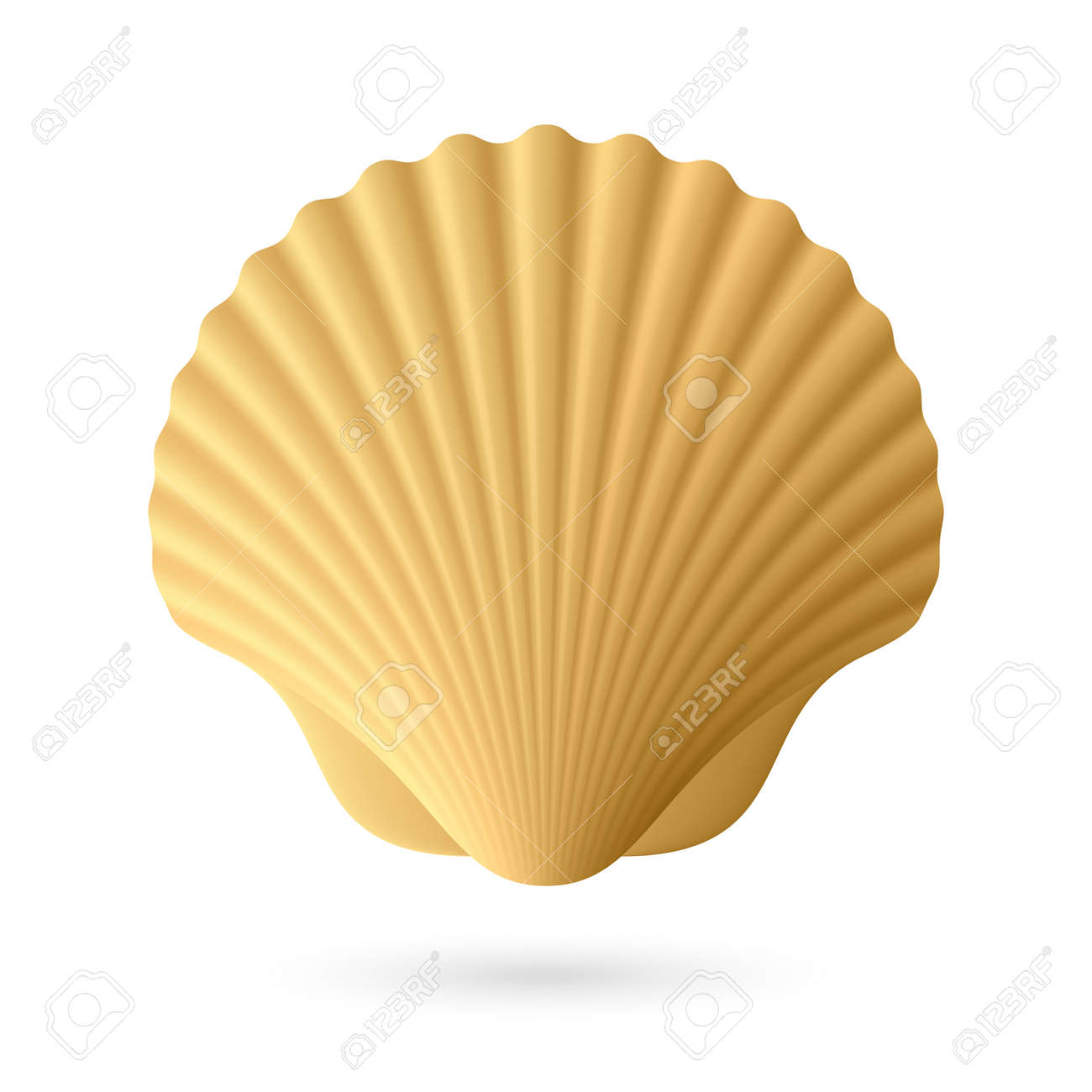 Scallop seashell royalty free cliparts vectors and stock scallop seashell stock vector 16962560 biocorpaavc Image collections