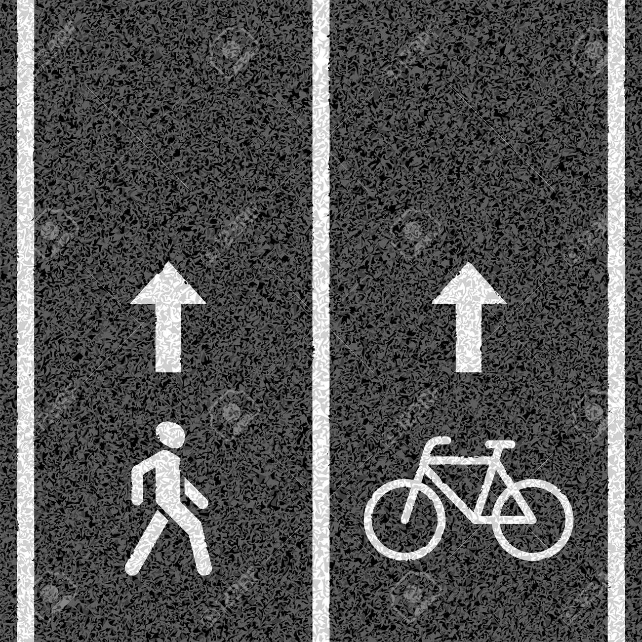 Bicycle and pedestrian paths - 21620823