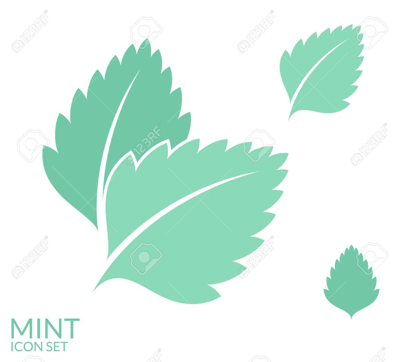 10 933 mint leaf stock illustrations cliparts and royalty free mint rh 123rf com leaf vector image leaf vector logo