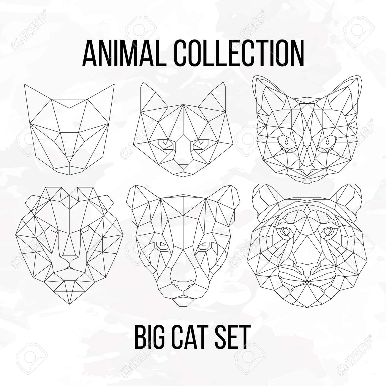 Set Of Geometric Cat Tiger Lion Puma Head Isolated On White Background Vintage Design Element Illustration