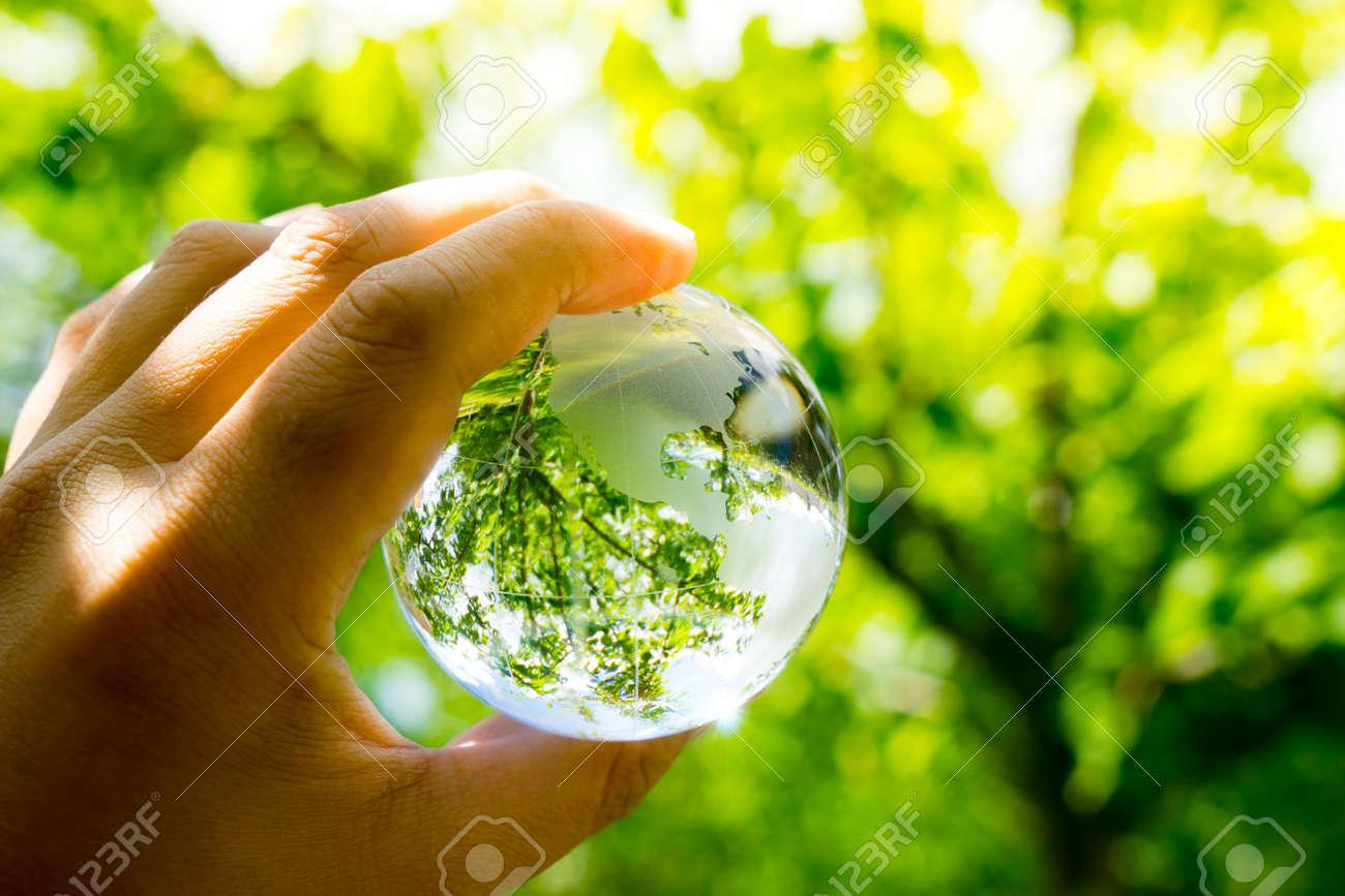 Green & Eco environment, glass globe in the garden - 45278662