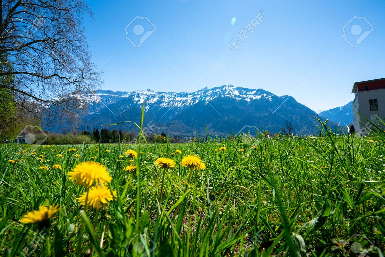 Interlaken city and Jungfrau, Switzerland - 133551958