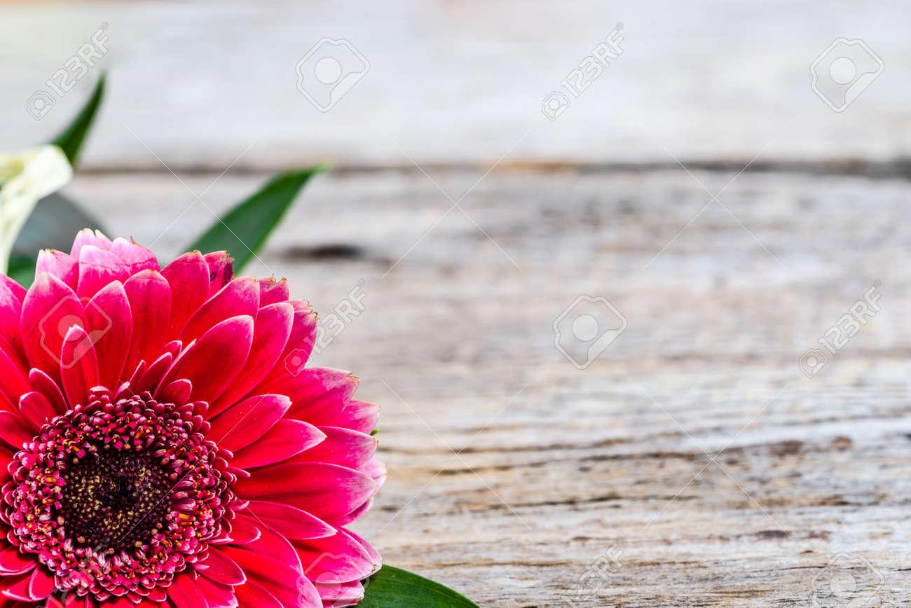 Flor De Gerbera, Tarjeta De Marco Para El Día De Las Madres, Día De ...
