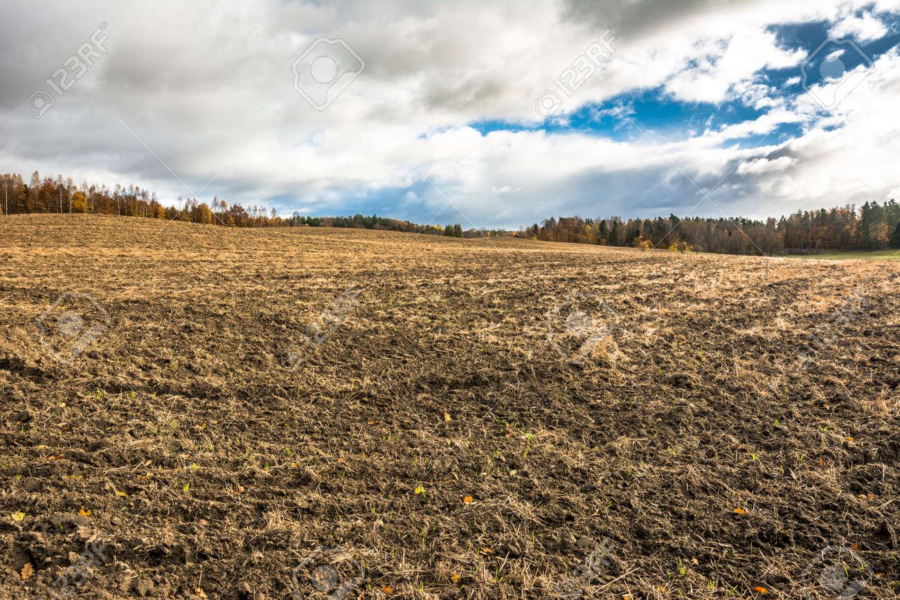 Resultado de imagen para tierras sin roturar en el campo imagenes
