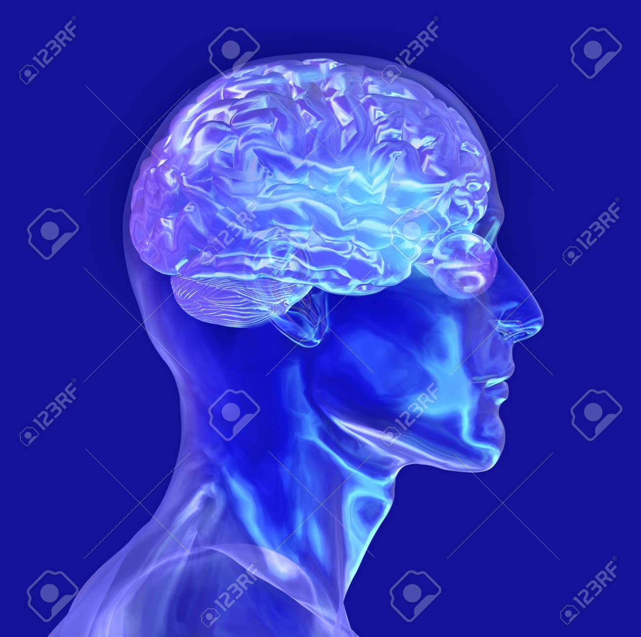 3d render of a glass male head with a brain. Stock Photo - 11193959