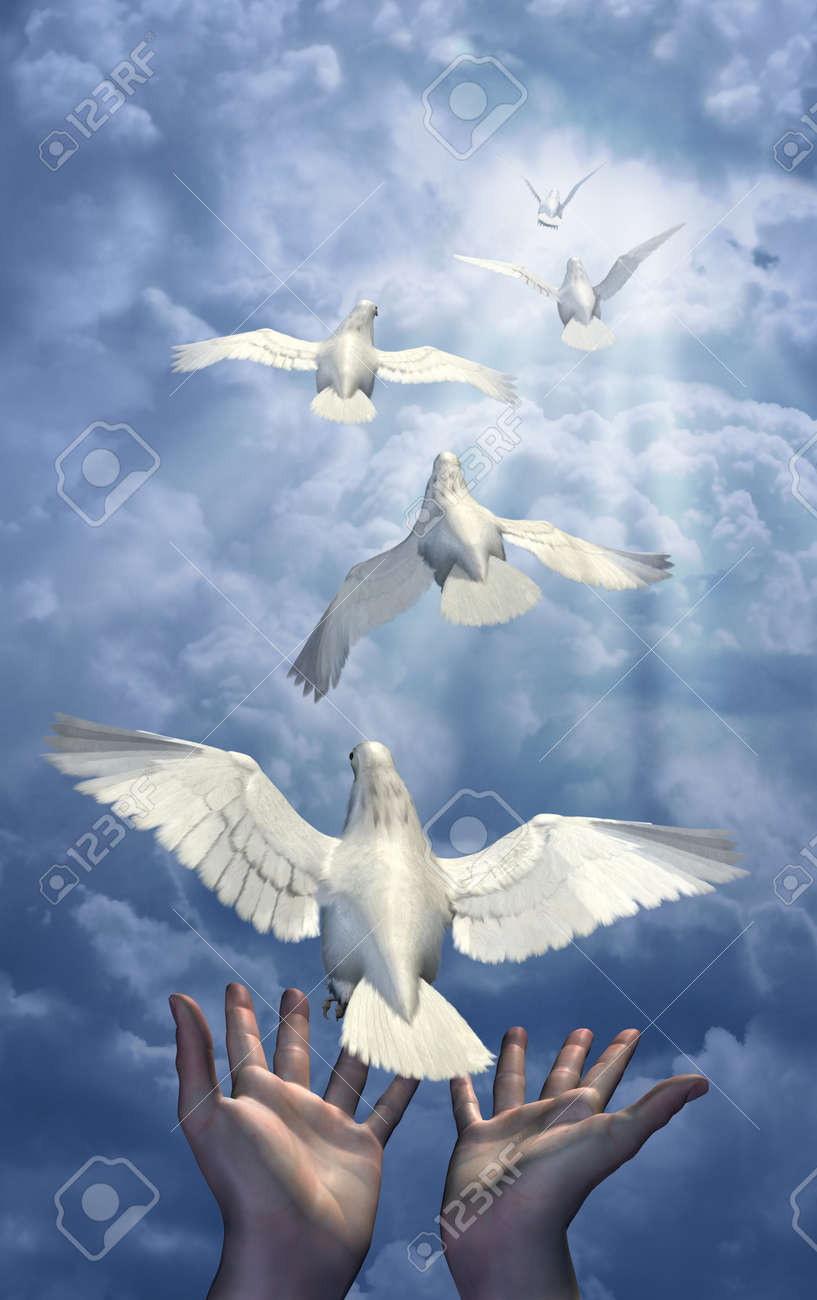 Releasing the Doves - combination of 3d renders, digital photos and digital painting. Stock Photo - 11277206