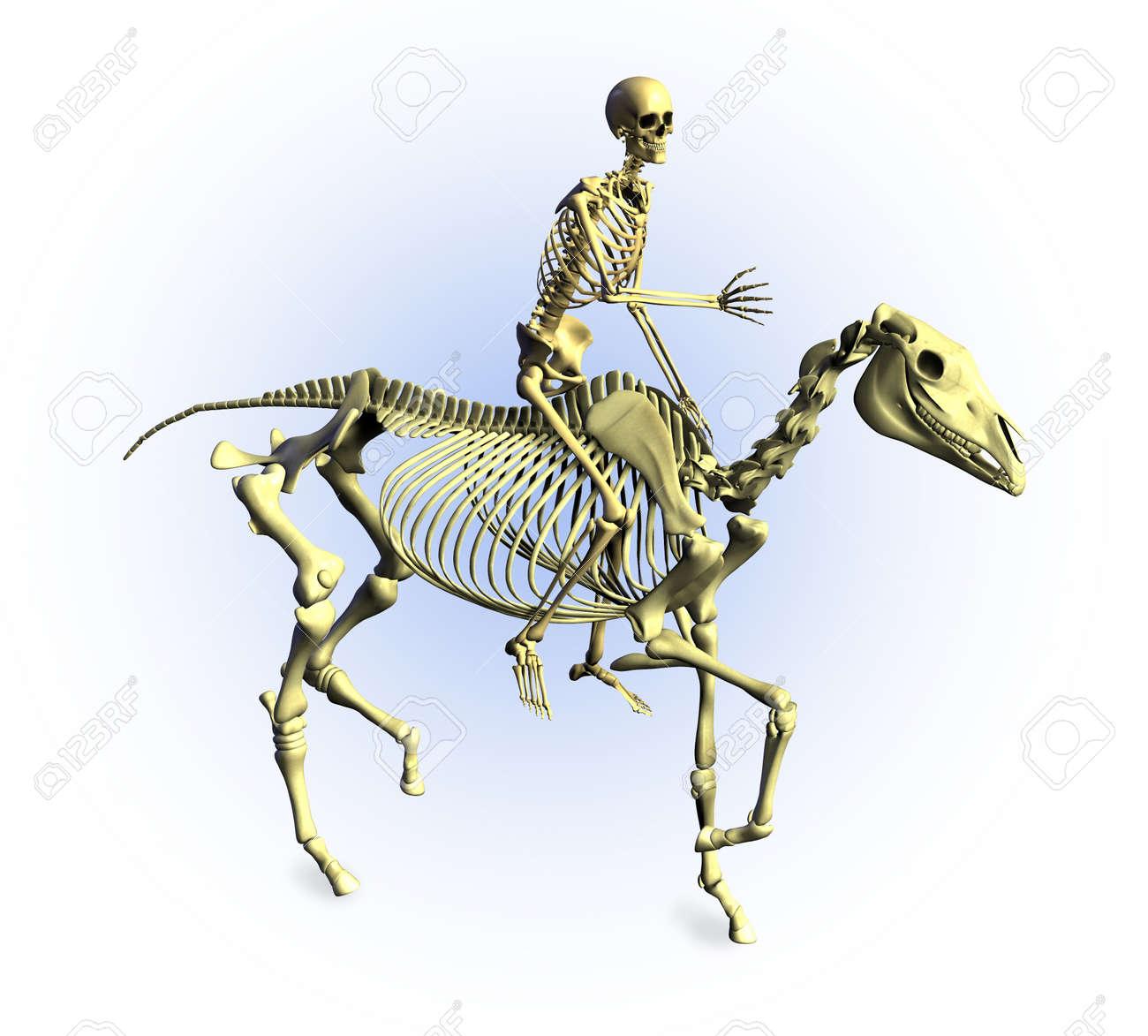 3d Render Of A Human Skeleton Riding A Skeleton Horse Stock Photo