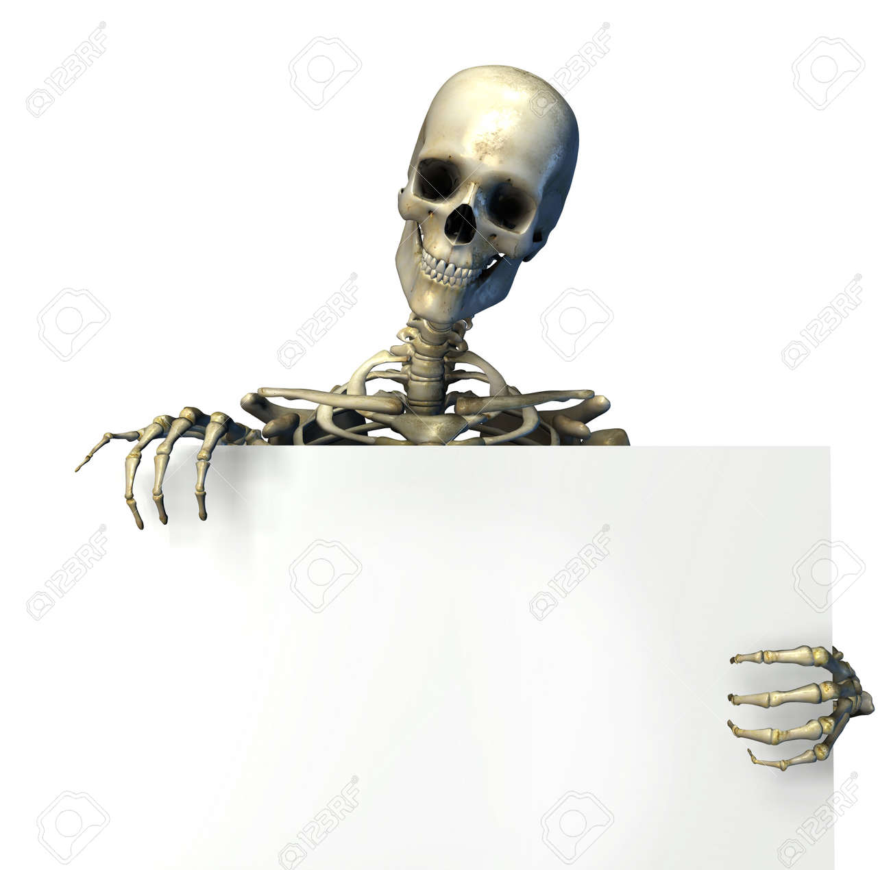 Skeleton Holding The Edge Of A Blank Sign 3d Render Stock Photo